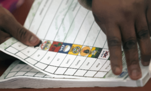 2019 Elections: Coalition Arrangements Are The Most Pragmatic Prospect Facing Political Parties - Prof Fikeni