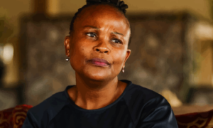 We Have Always Had Doubts About Busisiwe Mkhwebane's Ability To Do The Job - Hon. Glynnis Breytenbach