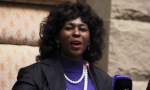 Prof Seepe: Dr Makhosi Khoza Chose To Walk Away, Because It Is More Dignified Than Being Expelled