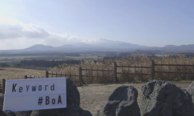 Next installment of 'Keyword#BoA' to showcase trip to Jeju Island
