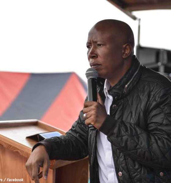 ANC denies any plans to assassinate Malema