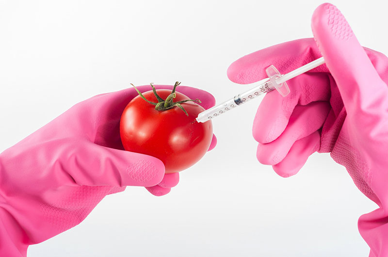 List three advantages and three disadvantages of the use of genetically modified organisms