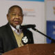 EFF slams Cyril Ramaphosa for making Blade Nzimande acting Minister of Home Affairs