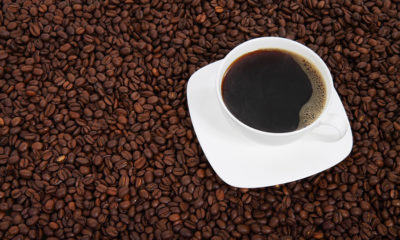 Italy donates €5.8 million to Mozambique's speciality coffee industry