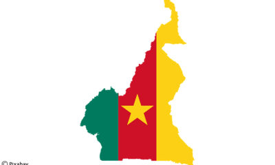 Joseph Dion Ngute appointed Prime Minister of Cameroon