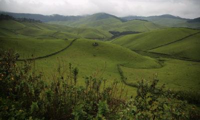 Gishwati-Mukura National Park