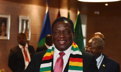 President Mnangagwa pushes for global ban lift on ivory trade